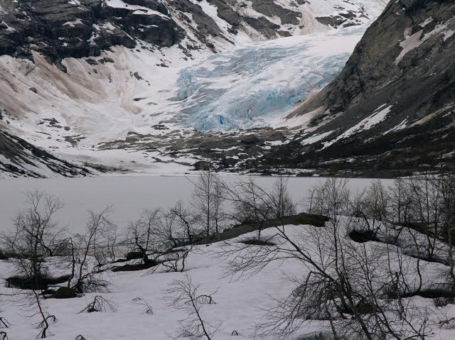 Nigardsbreen_foto